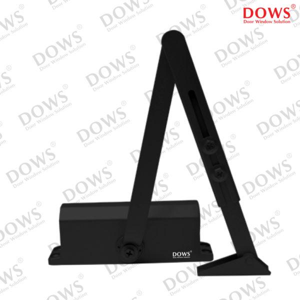 DCL-DOWS-303-NHO-BA