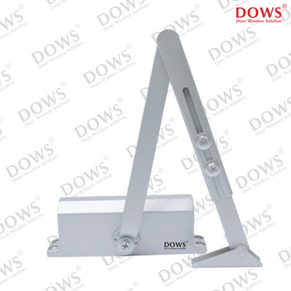 DCL-DOWS-303-NHO-NA